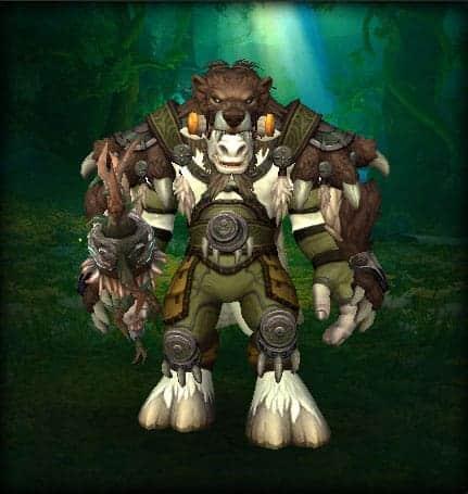 10 Best Druid Transmog sets 2
