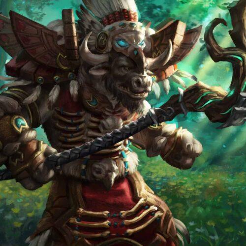 10 Best Druid Transmog sets