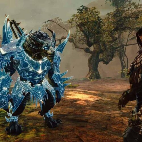 Guild Wars 2 Gives An Update On Security And Reporting