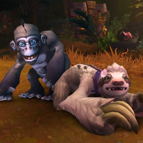 Support Doctors Without Borders With The WoW Charity Pet Program